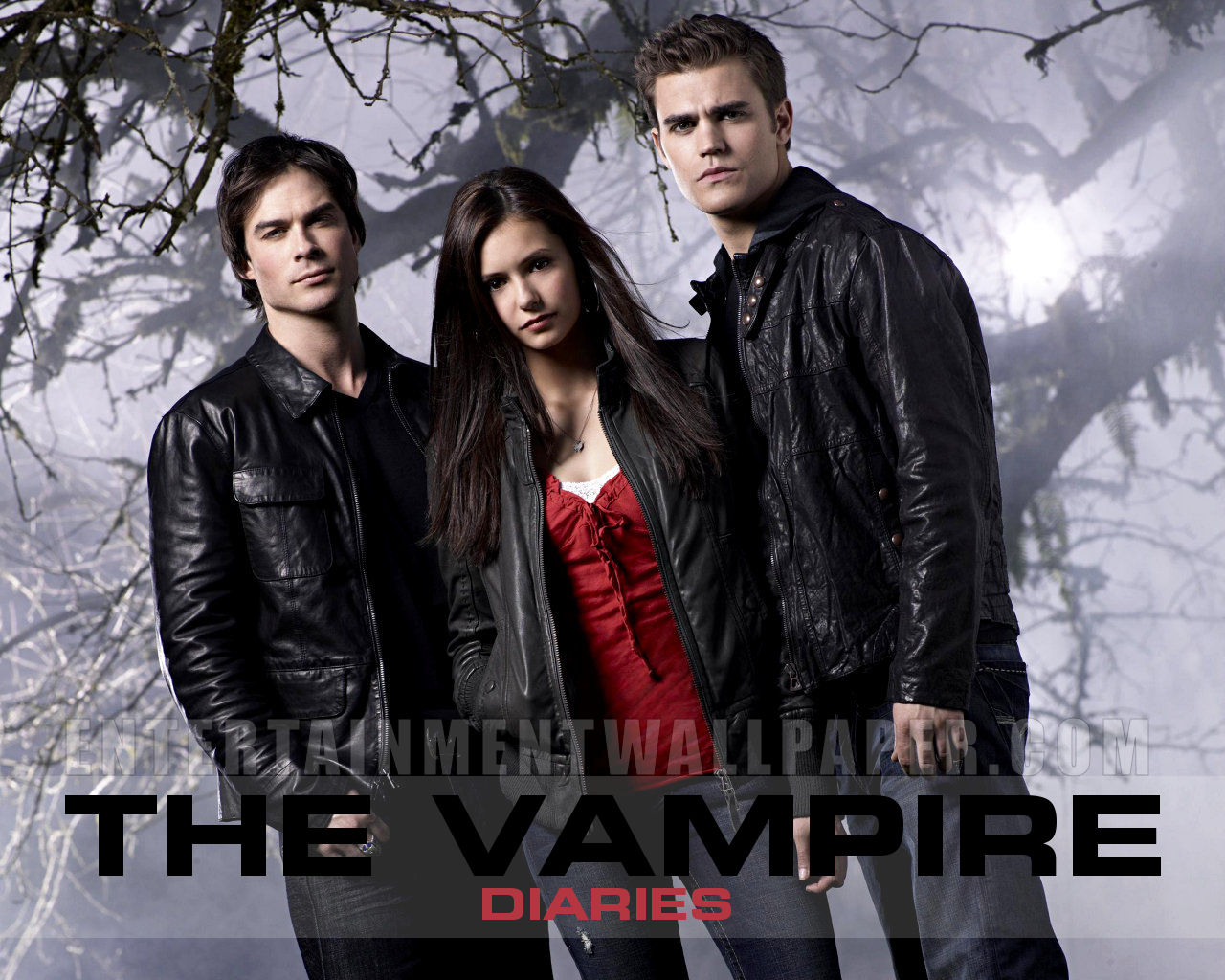 tv_the_vampire_diaries01